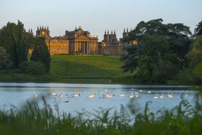 Lancelot 'Capability' Brown transformed the Parkland
